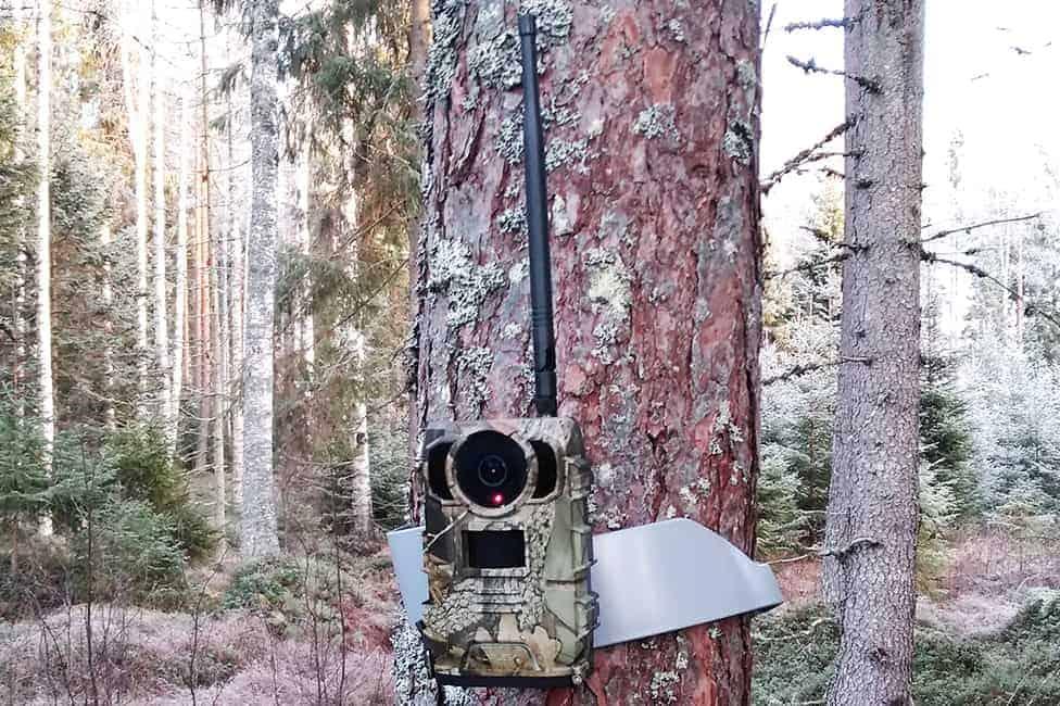 WiFi lähettävä riistakamera 2K – OWLZER Z1 4G
